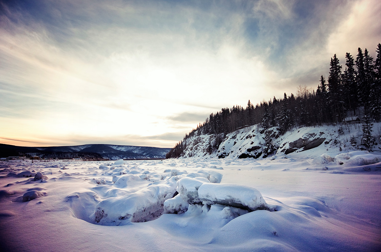 The Yukon Quest