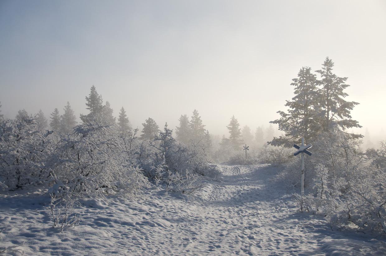 Kiilopaa Trail