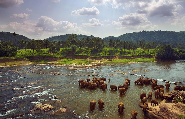 Levison Wood | Walking the Nile
