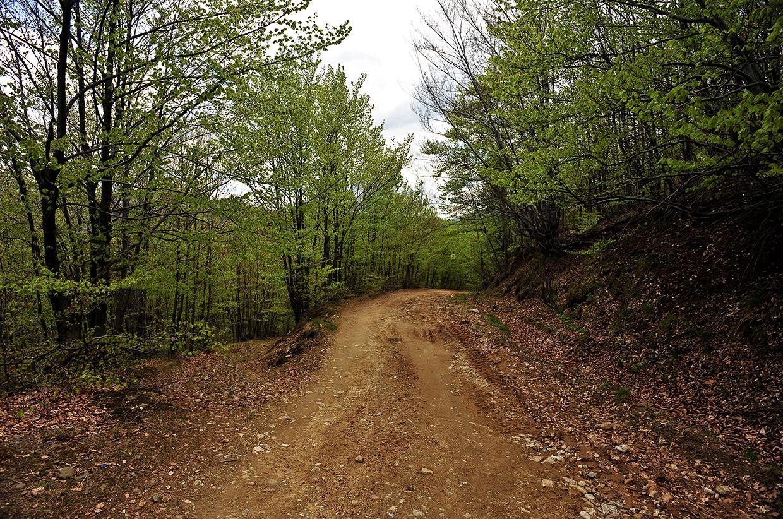 Off the beaten track - Romania