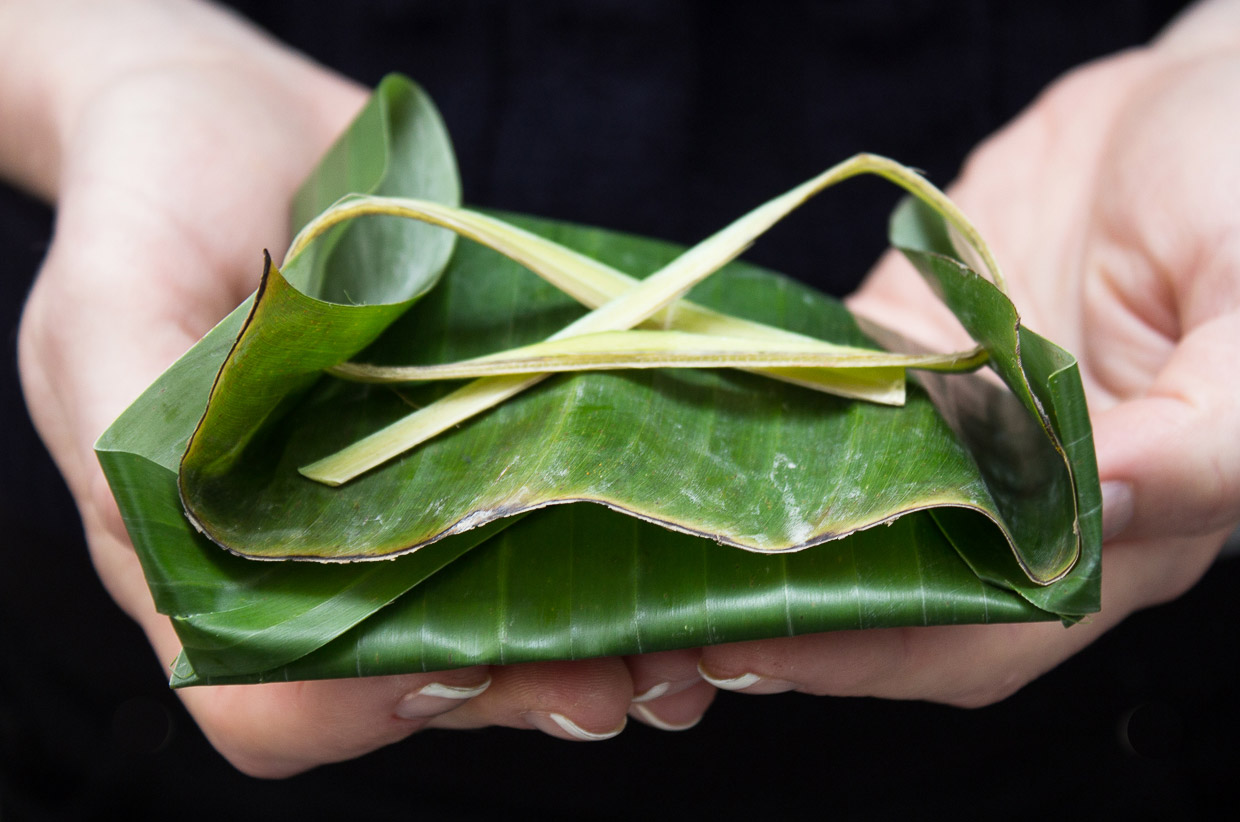 Banana Leaves - Photo by Claire Burge