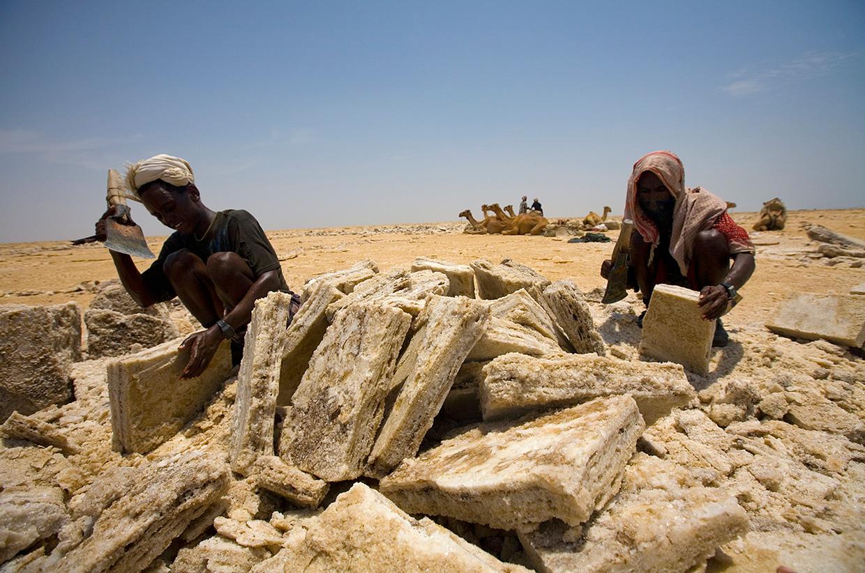 The Afar Tribe - Photo by Ryan Salm