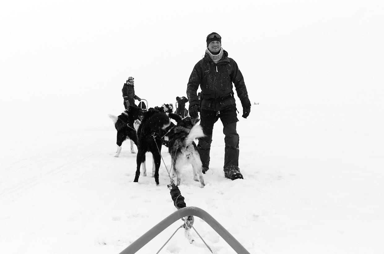Svalbard Dogsled - Photo by Jonathan Pozniak