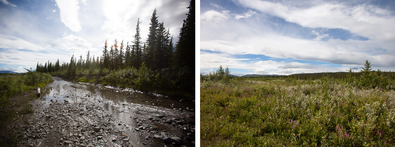 Alaska - Photo by Dave Gill