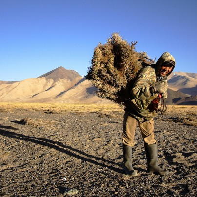 Orozbek The Hunter - Photo by Matt Traver