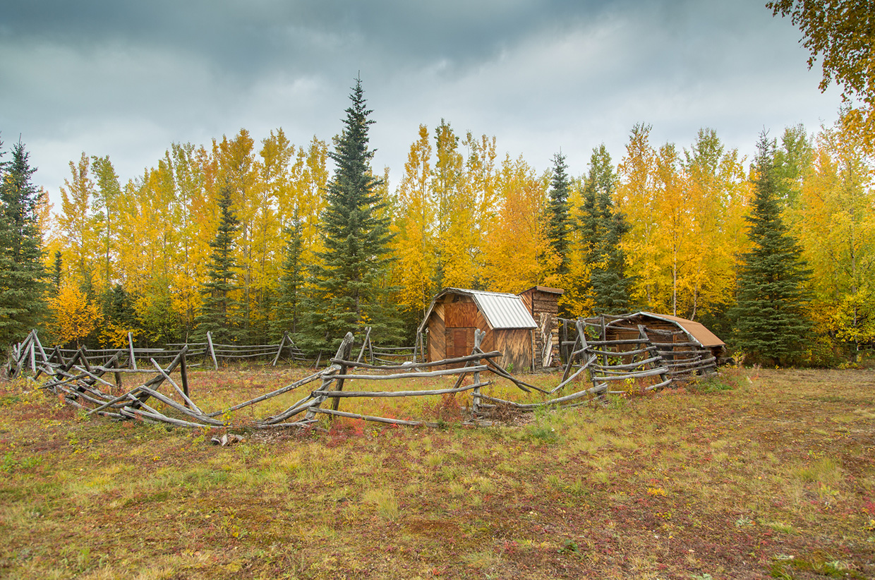 A lone homestead in the Wrangells, Alaska. Photo © Bjørn Olson