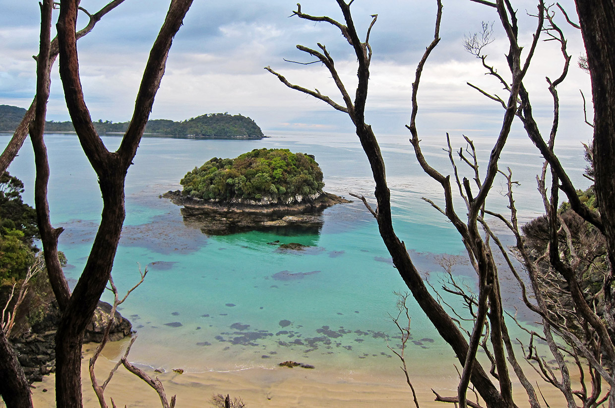 Stewart Island Tropical Trail