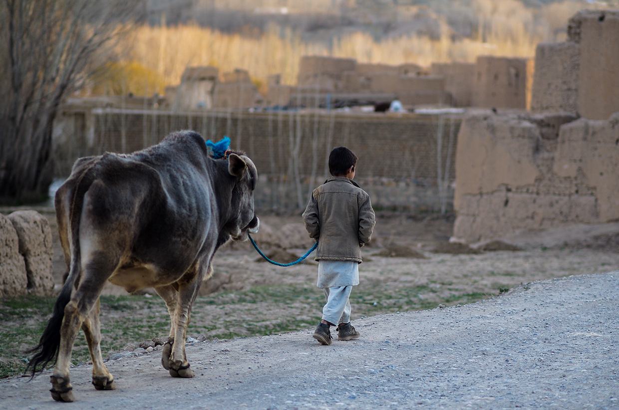 Life in Bamiyan