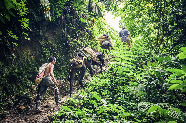 Lost-City-Trek-Colombia-5388