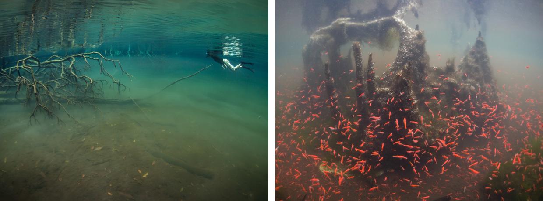 marine-lakes-ethan-daniels-08