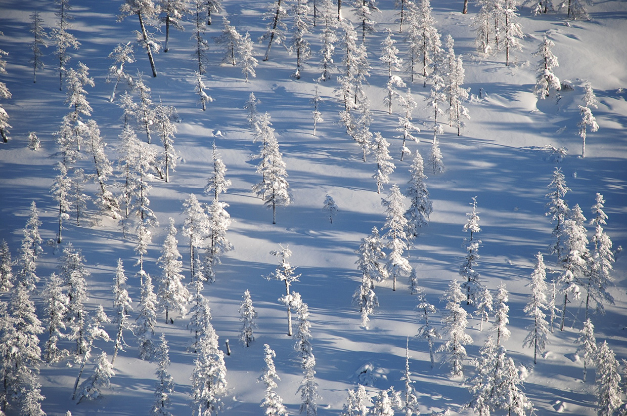 Snow-covers-the-valley-sides-and-taiga-of-the-Republic-of-Sakha