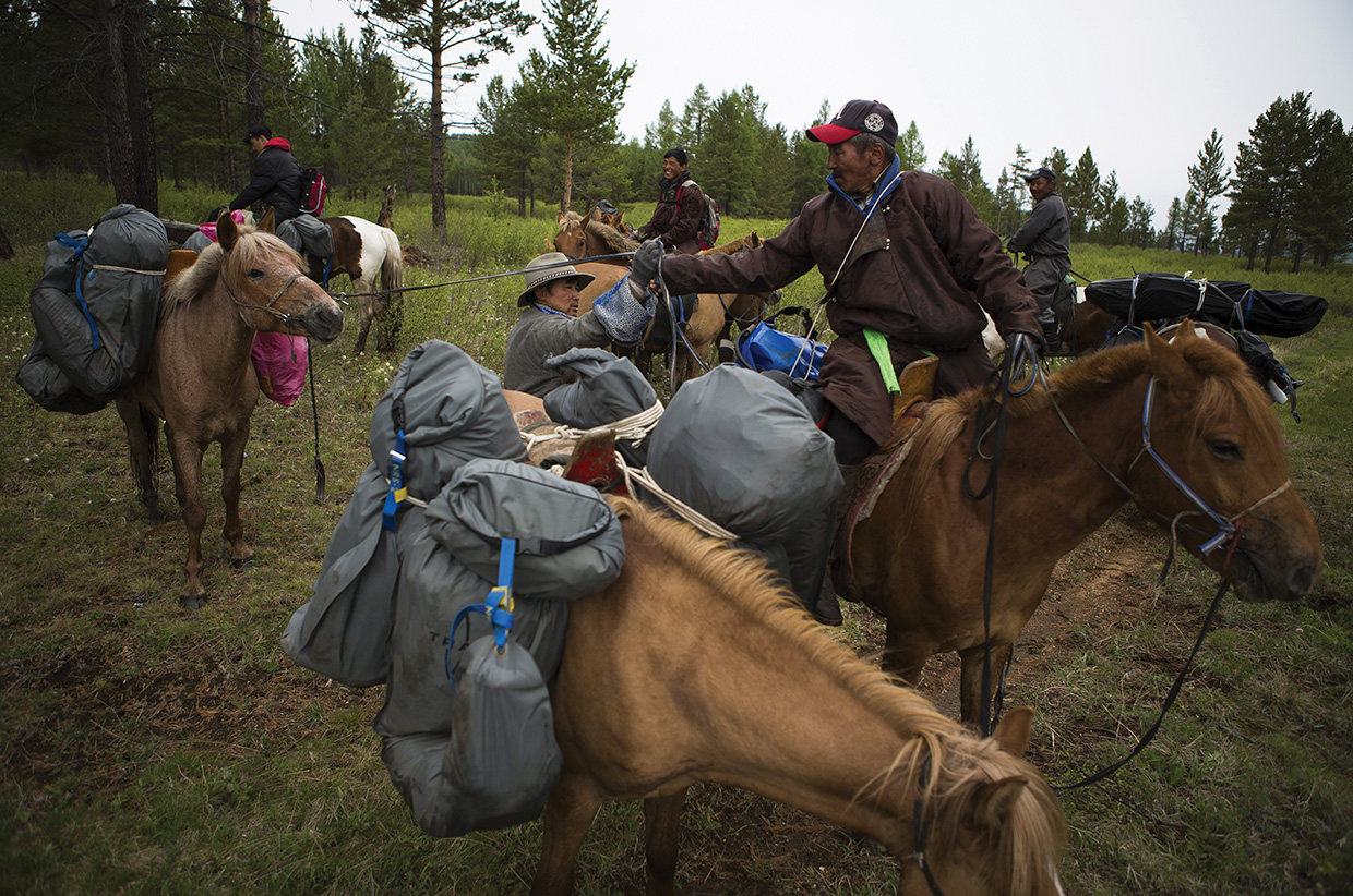 Horse packing across the marsh lands as the team travel to the headwaters of the Onon river which later becomes the Amur River.