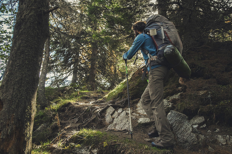 02-Dan-Forest-Hike