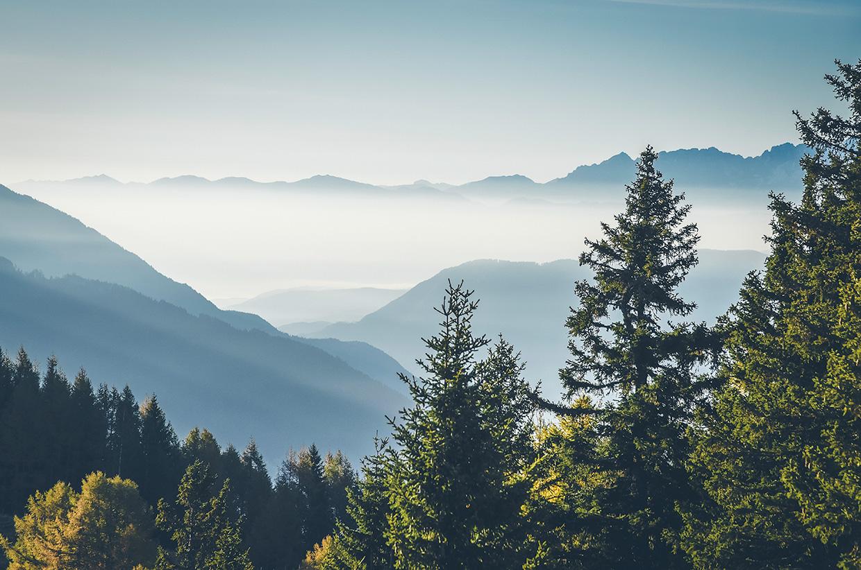 03-Morning-Landscape