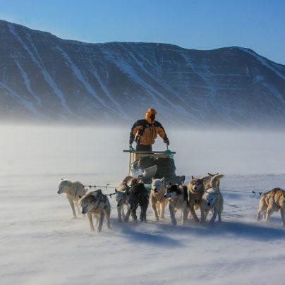 Review: Polar Eskimo by Alex Hibbert