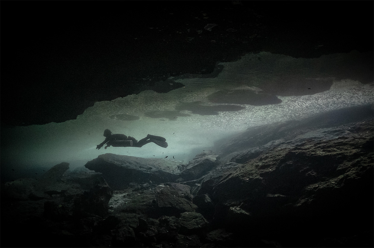 Diving in the Dark